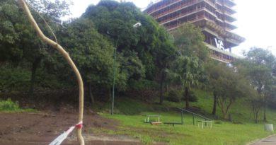 Denuncian que una obra de lujo destruyó espacio verde en la Costanera