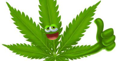 Un kilo de cannabis, una llamada, un verdadero viaje