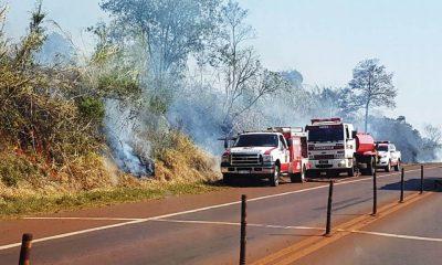 Extrema peligrosidad de incendios en todo Misiones, advierte Ecología
