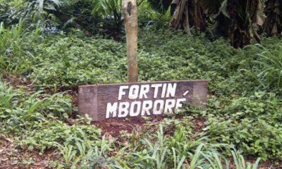 Joven mbya condenado a 8 años de prisión por una violación en Fortín Mbororé