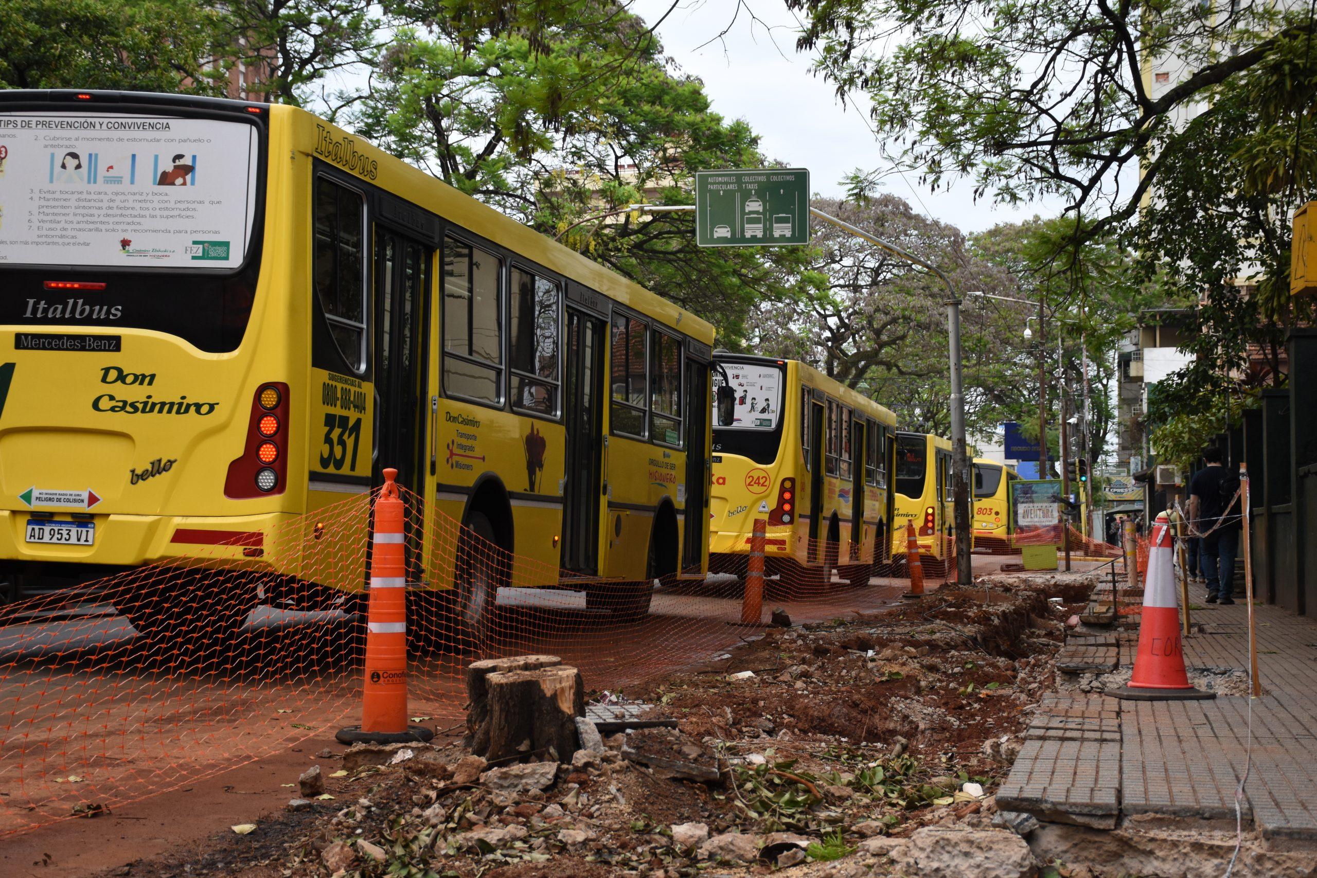 Posadas: para instalar parada sustentable, la Muni cortó árboles de la vereda