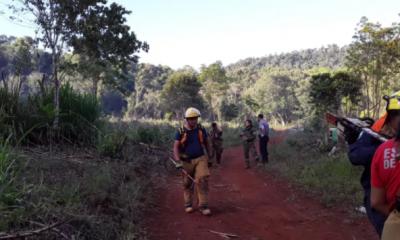 Fuego intencional afectó unas 20 hectáreas de la reserva Yaboty
