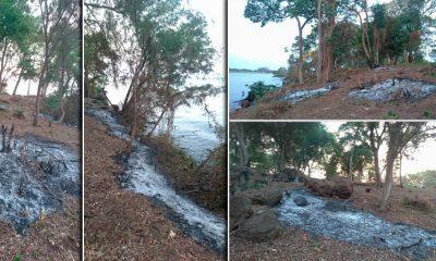 """Denuncian """"crimen ambiental"""" del Pyrá Pytá en la vera del río en Villa Cabello"""