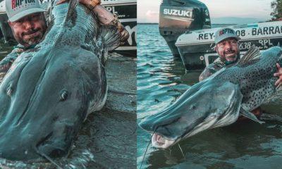 Pescaron del Paraná un surubí de casi dos metros en Esquina