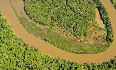Ecología analizará daño ambiental en el arroyo Garuhapé y prometió sanciones