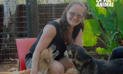 Denuncian por maltrato animal a Etelvina Sorghe, fundadora de El Refugio